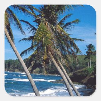 El verano tropical de la isla agita St Lucia Pegatina Cuadrada