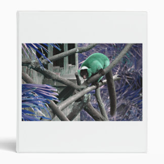 el verde azul superó al primate colorized lemur