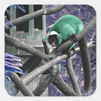 el verde azul superó al primate colorized lemur calcomanías cuadradas