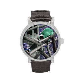 el verde azul superó al primate colorized lemur relojes de pulsera