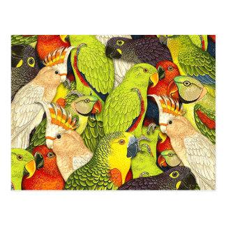 El verde caprichoso de la naturaleza repite mecáni tarjetas postales