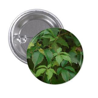 el verde deja a boho del otoño el celtic lindo pin redondo de 1 pulgada