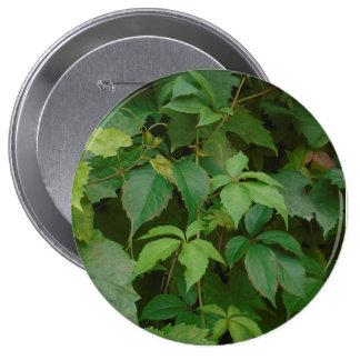 el verde deja a boho del otoño el celtic lindo pin redondo de 4 pulgadas