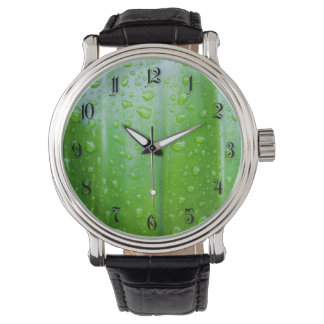 El verde deja el fondo reloj