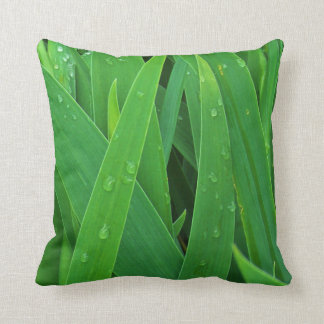 El verde deja la almohada