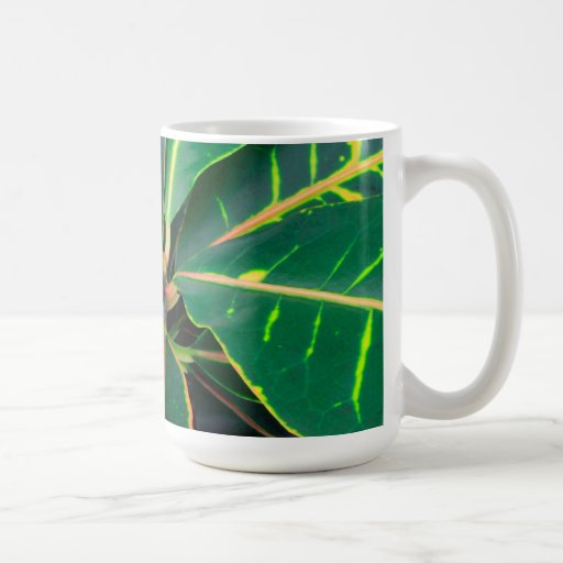 El verde del Croton deja el fondo Tazas