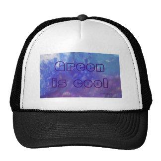 El verde del gorra es pintura púrpura de la aguama