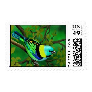 El verde dirigió sellos del pájaro del Tanager