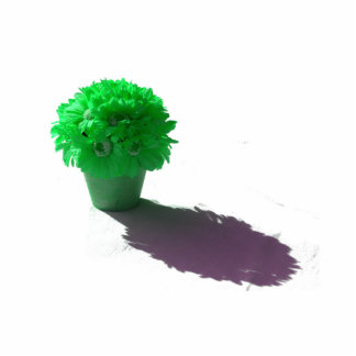 El verde florece el cubo y la sombra blancos esculturas fotográficas