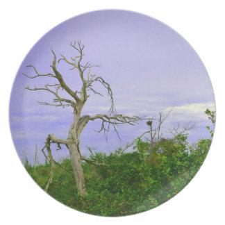 el verde púrpura del árbol muerto deja la escena d platos de comidas