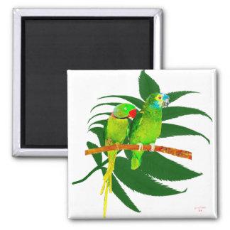 El verde repite mecánicamente los regalos imán cuadrado