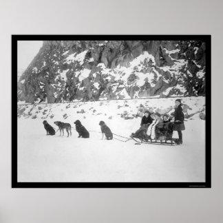 El viajar por el trineo Canadá 1912 del perro Posters
