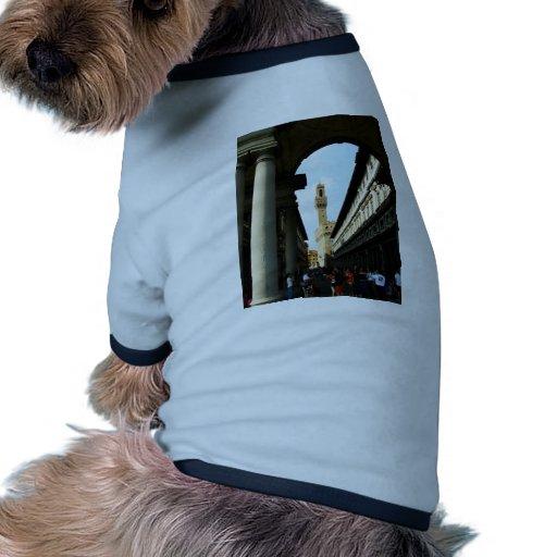El viajar ropa de perro