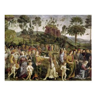 El viaje de Moses, c.1481-83 Postales