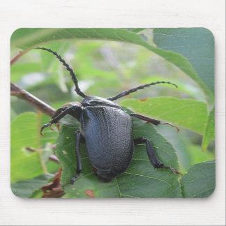 El viaje de un escarabajo alfombrilla de ratones