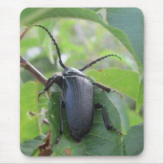 El viaje de un escarabajo alfombrillas de ratón