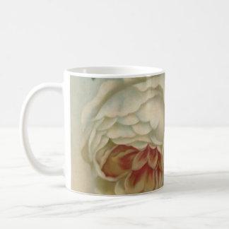 El Victorian subió rosas ingleses de la taza/flora