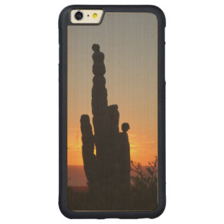 """""""El viejo """" Funda De Arce Bumper Carved® Para iPhone 6 Plus"""