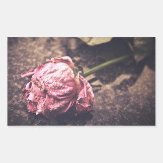 El viejo rosa teñido del vintage subió la foto pegatina rectangular