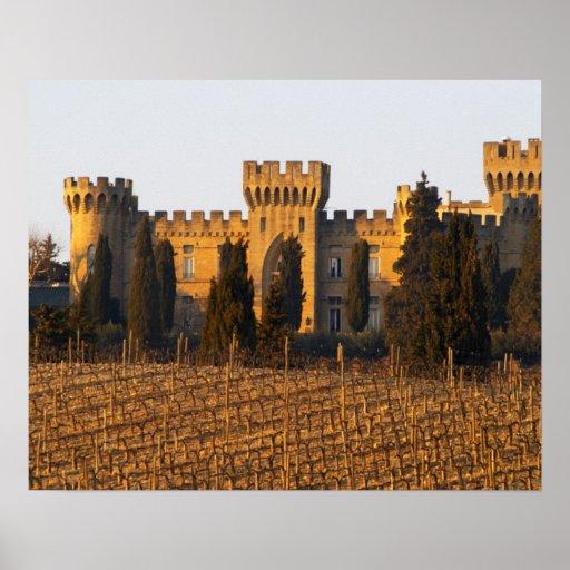 El viñedo con las vides del syrah y el castillo fr poster