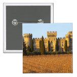 El viñedo con las vides del syrah y el castillo fr pin