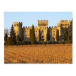 El viñedo con las vides del syrah y el castillo fr postales