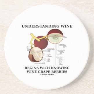 El vino de comprensión comienza con saber la uva d posavasos diseño