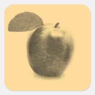 El vintage Apple da fruto arte de la pintura - Colcomanias Cuadradass