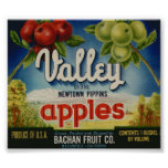 El vintage Apple viejo da fruto las etiquetas del  Impresiones