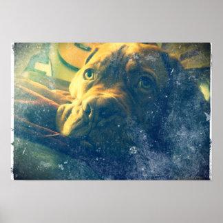 El vintage de Dogue de Bordeaux inspiró el poster