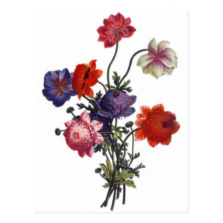 El vintage florece Boquet Tarjeta Postal