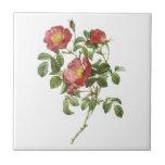 El vintage florece el rosa rojo floral del amor po azulejo cerámica