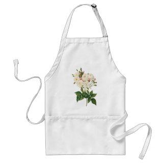 El vintage florece floral se ruboriza Redoute Delantal