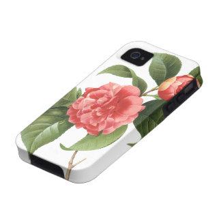 El vintage florece las camelias rosadas rojas flor Case-Mate iPhone 4 carcasa