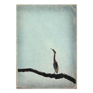 El vintage inspiró la garza verde en el cielo azul foto