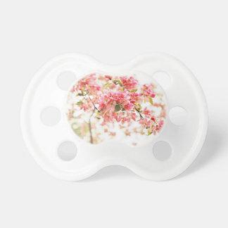 El vintage inspiró los flores rosados y verdes de chupetes para bebés
