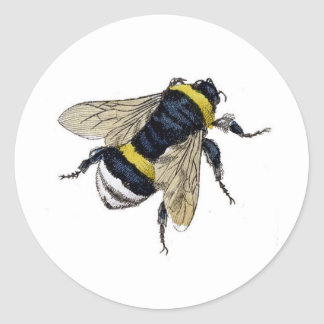 El vintage manosea la abeja etiqueta redonda