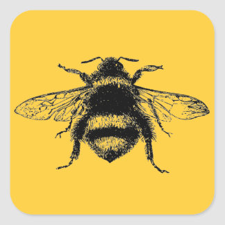 El vintage manosea la abeja pegatina cuadrada