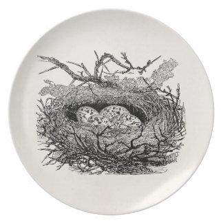 El vintage moteado Eggs pájaros personalizados Plato De Comida