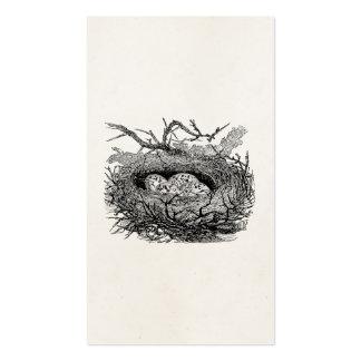 El vintage moteado Eggs pájaros personalizados Plantilla De Tarjeta Personal
