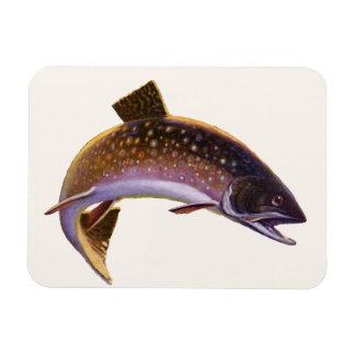 El vintage se divierte salmones de la pesca de los imanes flexibles