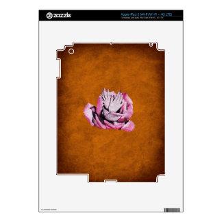 El vintage subió da Grunge de los clavos Pegatinas Skins Para iPad 3