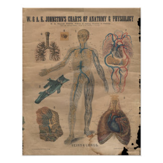 El vintage vetea la carta circulatoria 1906 de la  póster