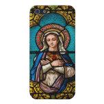 El Virgen María iPhone 5 Carcasas