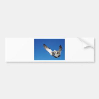 El volar adentro etiqueta de parachoque