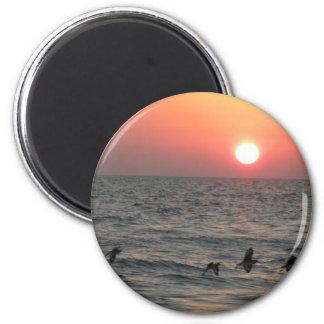 El volar con la puesta del sol iman de frigorífico