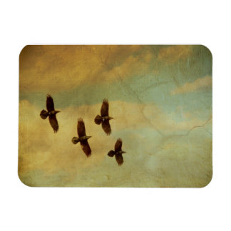 El volar de cuatro cuervos imanes rectangulares