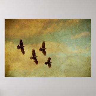 El volar de cuatro cuervos póster
