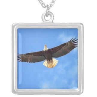 El volar de Eagle Colgante Cuadrado