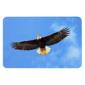 El volar de Eagle Iman